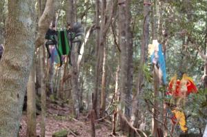 Superheroes_Blue Mountains_Australia_Deirdre_Robb