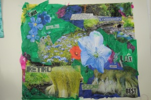 urban meadows_workshop_Deirdre_Robb